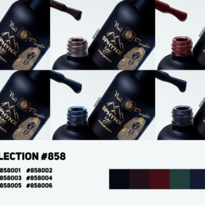 Collection #858