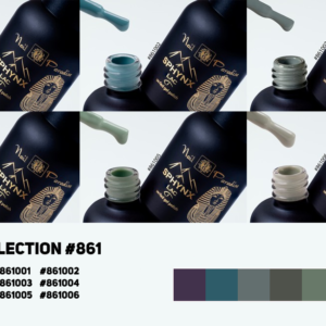 Collection #861