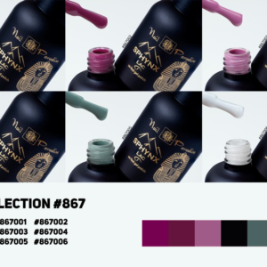 Collection #867